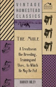 The Mule - A Treatise on the Breeding, Training and Uses, to Whi