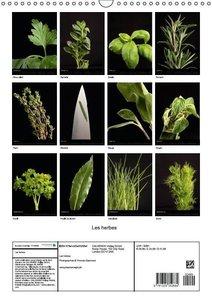 Les herbes (Calendrier mural 2015 DIN A3 vertical)