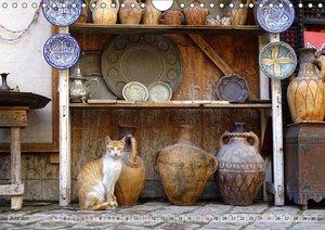 Marokko in Farbe
