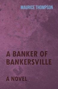 A Banker of Bankersville - A Novel