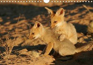 Afrikas Tierwelt (Posterbuch DIN A4 quer)