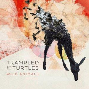 Wild Animals (LP)