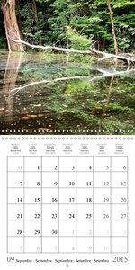 Nature Destinations Venezuela and Brazil (Wall Calendar 2015 300