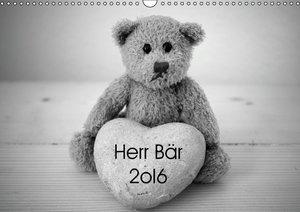 Herr Bär 2oI6 (Wandkalender 2016 DIN A3 quer)