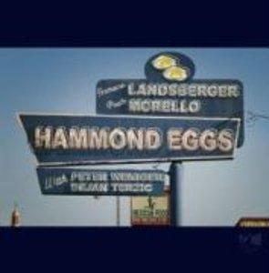Hammond Eggs
