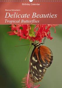 Delicate Beauties Tropical Butterflies