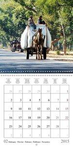 Amazing India (Wall Calendar 2015 300 × 300 mm Square)