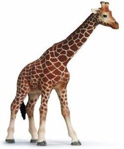 Schleich 14320 - Wild Life: Giraffenkuh