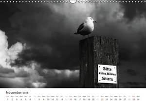 Moments in Black and White (Wall Calendar 2015 DIN A3 Landscape)