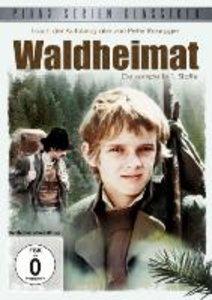 Waldheimat - Staffel 1