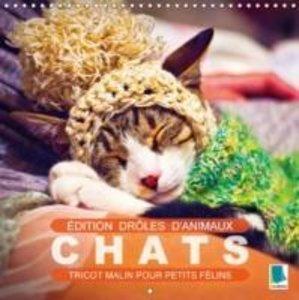 Calvendo: Edition Droles D'animaux : Chats - Tricot Malin Po