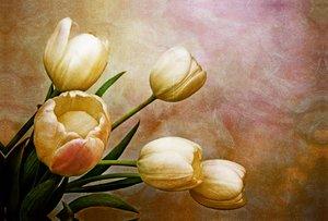 Premium Textil-Leinwand 120 cm x 80 cm quer romantic spring