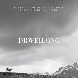 Drweilong