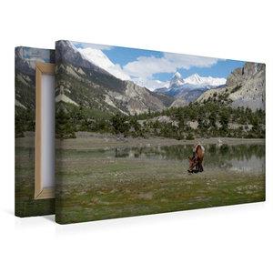 Premium Textil-Leinwand 45 cm x 30 cm quer Vor Manang