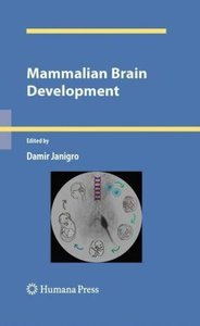 Mammalian Brain Development