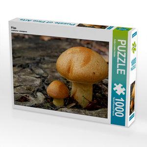 Pilze 1000 Teile Puzzle quer