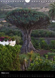 Teneriffa - Naturparadies im Atlantik