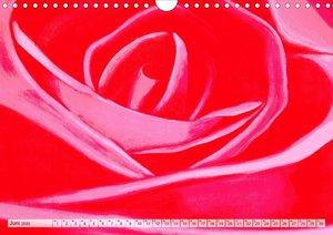 Rosenpower (Wandkalender 2020 DIN A4 quer)