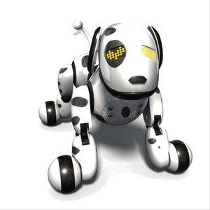 DOG Zoomer 2.0