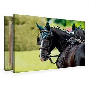 Premium Textil-Leinwand 75 cm x 50 cm quer Herrlicher Typ: Ulan