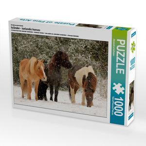 Ein Motiv aus dem Kalender Isländer - icelandic horses 1000 Teil