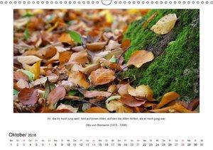 Der Naturkalender mit Zitaten und Sprüchen