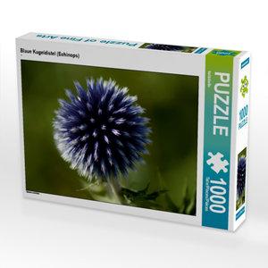 Blaue Kugeldistel (Echinops) 1000 Teile Puzzle quer