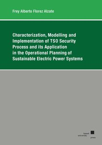 Characterization, Modelling and Implementation of TSO