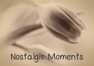 Nostalgic Moments (Poster Book DIN A3 Landscape)