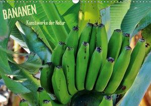 Bananen (Wandkalender 2019 DIN A3 quer)