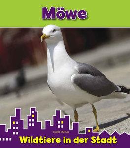 Möwe. Wildtiere in der Stadt
