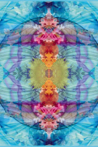 Premium Textil-Leinwand 60 cm x 90 cm hoch Quelle des Wasserfall