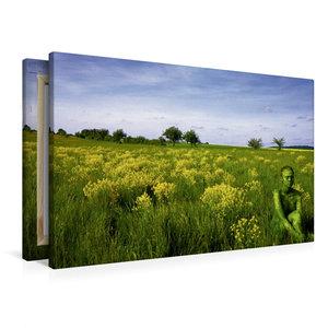 Premium Textil-Leinwand 90 cm x 60 cm quer Brachfläche bei Gaste