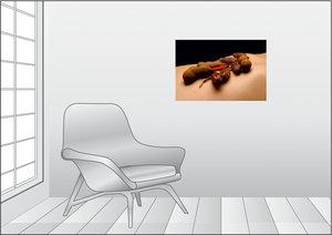 Premium Textil-Leinwand 75 cm x 50 cm quer Chili - Dattel - Tama