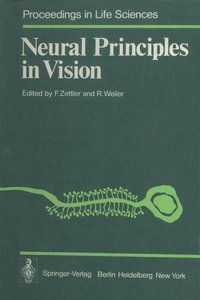 Neural Principles in Vision
