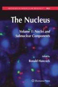The Nucleus 1