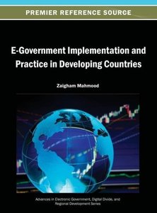 E-Government Implementation and Practice in Developing Countries