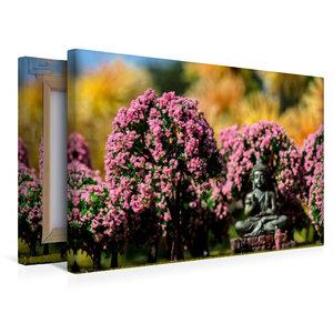 Premium Textil-Leinwand 45 cm x 30 cm quer Kirschblüte