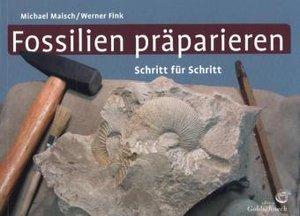 Fossilien präparieren