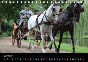 CIAT - Historischer Fahrsport in Celle (Tischkalender 2019 DIN A