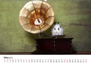 total tierisch just animals (Wandkalender 2019 DIN A2 quer)