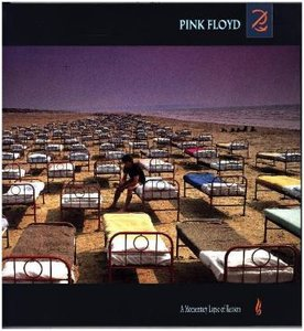 A Momentary Lapse Of Reason(20