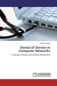 Denial of Service in Computer Networks