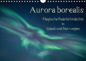 Aurora borealis - Magische Polarlichtnächte in Island und Norweg