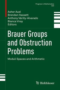 Brauer Groups and Obstruction Problems
