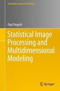 Statistical Image Processing and Multidimensional Modeling
