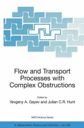 Flow and Transport Processes with Complex Obstructions - zum Schließen ins Bild klicken