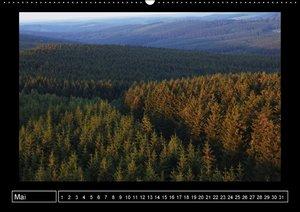Wildes Sauerland (Wandkalender immerwährend DIN A2 quer)