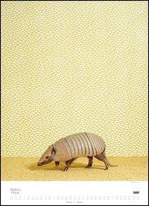 Animal House 2019 - Posterkalender