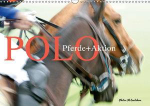 Polo Pferde + Aktion 2019